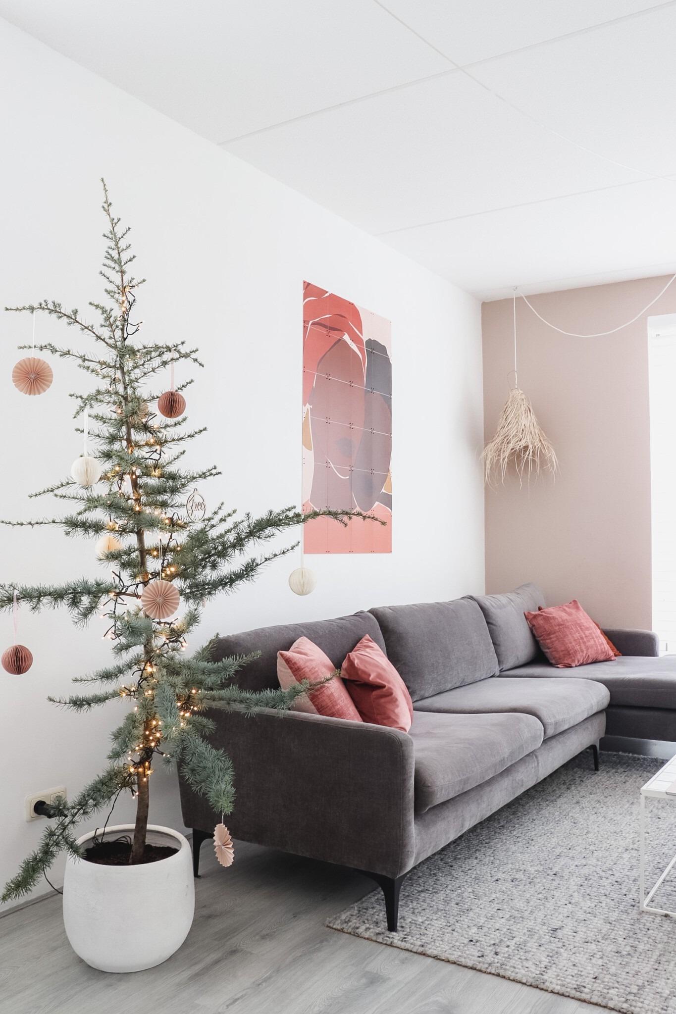 Blauwe Ceder boom voor een Scandinavisch en minimalistische kerst